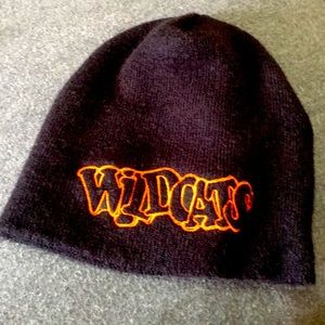 Vintage❤️ wildcats embroidery beanie made in USA
